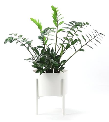 Metall Blumenbeet MOYENE Exclusive 37cm weiß