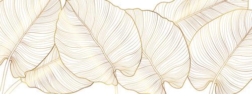 Fototapete goldene Blätter, Natur, Gold, Minimalismus, Monstera-Blätter