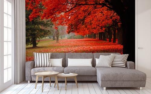 Fototapete Raum Herbst Park, rote Blätter, Herbstbäume, Dekoration