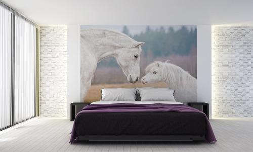 Fototapete Pferde, Shetlandpony, weißes Pferd, Wandtapete