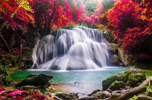 Wandgemälde Wasserfall, Landschaft, rote Baumblätter, Felsen