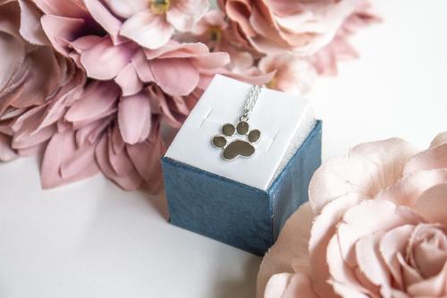Silberne Halskette mit Pfotenmotiv eines Hundes