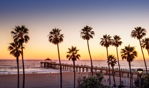 Wandbild Sonnenuntergang am Strand, Palmen, Pier, Farbverlauf