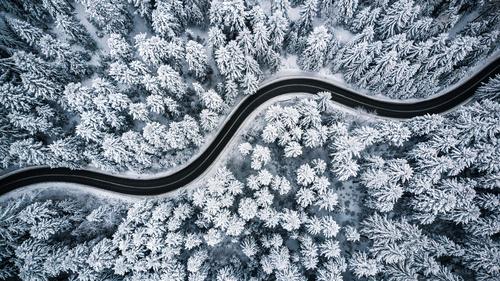 Winterwaldtapete, Bäume, Schnee, Straße durch den Wald, Luftaufnahme